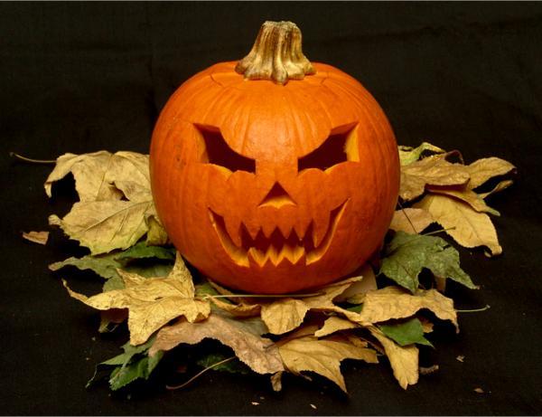 geschnitzte kürbisse  kürbisgesichter zu halloween