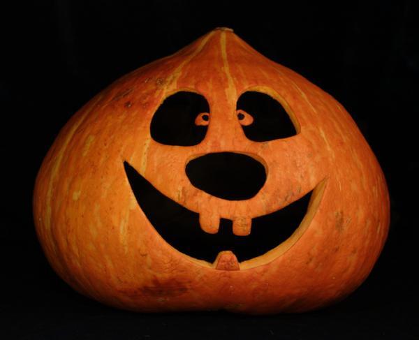 Geschnitzte Kurbisse Kurbisgesichter Zu Halloween